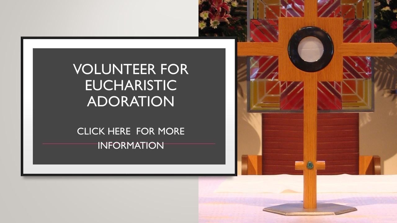 Volunteer for Eucharistic Adoration