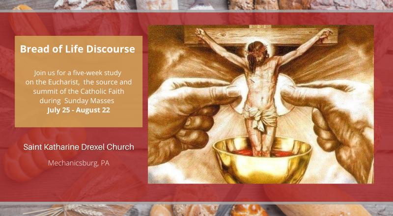 Bread of Life Discourse study during Sunday Mass 07.25.21 thru 08.22.21